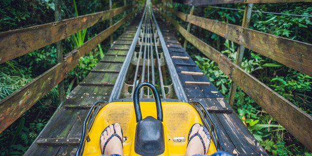 """The injured guest, who was not identified, reportedly """"flew out of the cart"""" on the Gatlinburg Mountain Coaster (not pictured) on Monday."""