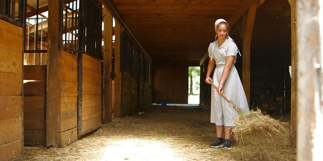 'Return to Amish' is premiering its sixth season on March 22, 2020.