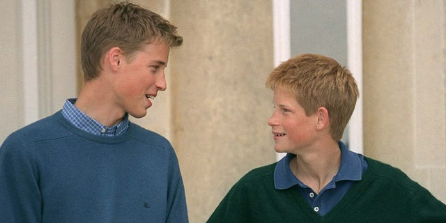 Prince William (left) and Prince Harry (right) during happier times.