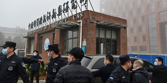 Members of the World Health Organization (WHO) team investigating the origins of the coronavirus arrive at the Wuhan Institute of Virology in Wuhan. (HECTOR RETAMAL/AFP via Getty Images)