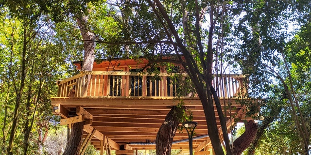 Jeffrey Morse is selling the treehouse for ,500 after being told to remove it by the town of Richmond.