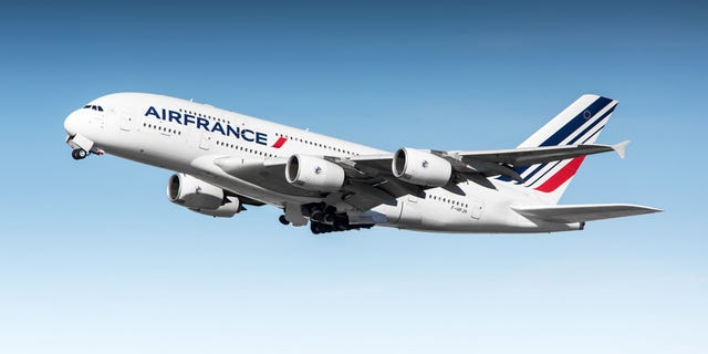 The passenger was flying on an Air France flight from Paris to New Delhi on Friday.