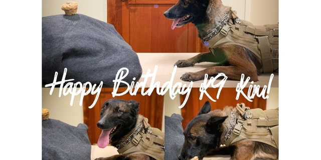The Bend Police Department wished their K9, Kim, a happy 6th birthday in January.