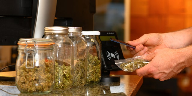Paying by credit card for marijuana at a cannabis dispensary. Purchasing legal recreation drugs. Medical marijuana at a clinic.