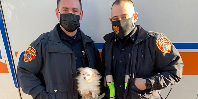 Officer Rivera is on the left holding the Chihuahua, JJ. Officer Galanos is on the right.