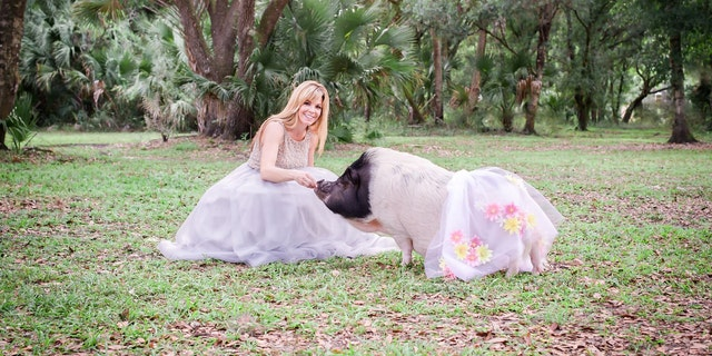 Customers send Burke their pet pigs' measurements, which she uses to sew custom outfits.