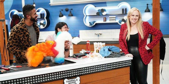 """Rebel Wilson hosts ABC new grooming competition """"Pooch Perfect."""""""