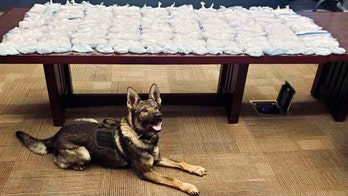 California Highway Patrol dog helps uncover 81 pounds of meth, 11 pounds of fentanyl tablets