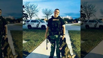 Florida police dog helps capture man involved in fatal shooting, $100G robbery
