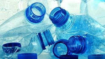 BPA-like chemical raising concern of 'alarming' brain damage: study