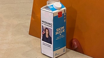House Republicans display Kamala Harris milk carton at news conference: 'Missing at the border'