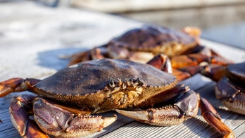 Seafood company owner fined $25G after eating receipt to obstruct inspection