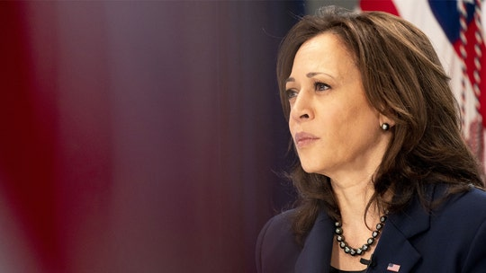 Kamala Harris slammed by Texas lawmaker for new border 'excuse': 'It's not COVID and you know it'