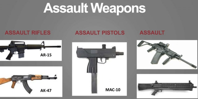 """Firearms 101"" slide (Credit: American Accountability Foundation)"