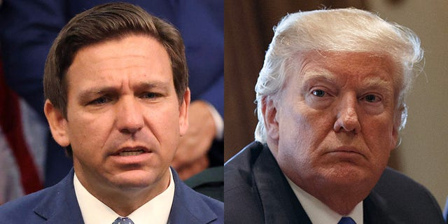 Florida Gov. Ron DeSantis could be the GOP's next standard bearer, succeeding former President Trump. (Associated Press/Getty Images)