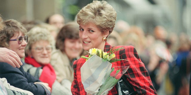 The Princess of Wales, circa 1991.