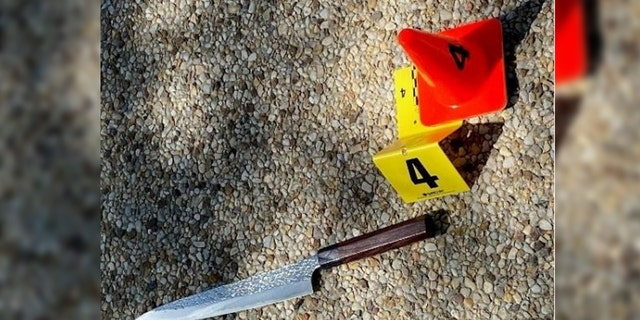 The suspect allegedly carried a knife in the fatal Capitol attack on Friday.