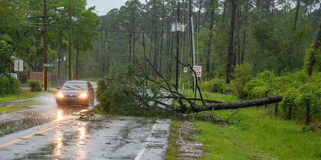 A car goes around a fallen tree on Patton Drive in Pensacola on Saturday, April 10, 2021, after a powerful storm swept through the area.Saturday Storm 6