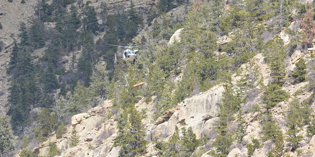 A helicopter crew spotted Schnitzer's body at the bottom of an 80-foot cliff, the sheriff's office said.