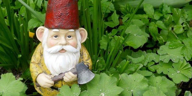 The U.K. has seen an increase in the demand for garden gnomes, but the recent Suez Canal blockage and other factors have made shipments of the accessories difficult to come by, SWNS reports.