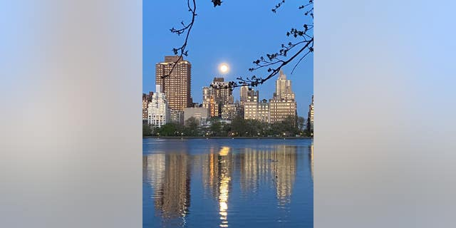 Pink supermoon taken in New York City on April 26, 2021