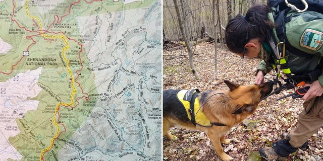 Multiple agencies, dozens of volunteers and several dog teams searched for Sauer after he went missing in the park on April 22.