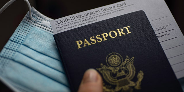 In the U.S., the issue of vaccine passports has largely become partisan, with Republican lawmakers mostly against the concept.