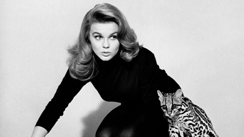 Ann-Margret reflects on 'Viva Las Vegas,' visiting troops in Vietnam: 'Being with them has been in my heart'