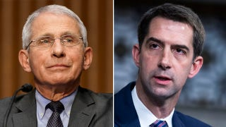Tom Cotton: Fauci now acting like a Democrat 'activist,' not a scientist or doctor