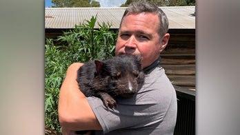 Jeff Corwin on historic Tasmanian devil return: It's 'a glimmer of hope'