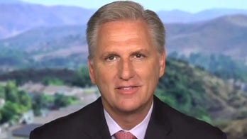 House Minority Leader Kevin McCarthy slams Dems for 'destroying' the country