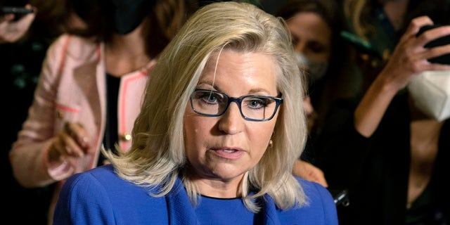 Rep. Liz Cheney, R-Wyo., speaks to reporters on Capitol Hill in Washington on Wednesday, May 12, 2021. House Republicans meet at the Capitol to decide whether to remove Rep. Liz Cheney, R-Wyo., from her leadership post, in Washington, Wednesday, May 12, 2021. (AP Photo/Manuel Balce Ceneta)