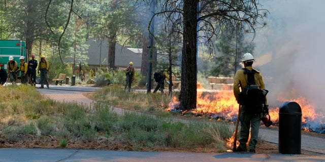 In this May 14, 2021, photo provided by the High Desert Museum, NOSOTROS. Forest Service firefighters carry out a prescribed burn on the grounds of the High Desert Museum, near Bend, Oregón. (Kyle Kosma/High Desert Museum via AP)