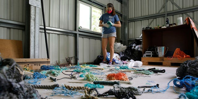 Jennifer Lynch, a research scientist at the National Institute of Standards and Technology and the co-director of Hawaii Pacific University's Center for Marine Debris Research, catalogs pieces of ghost nets on Wednesday, May 12, 2021, in Kaneohe, Hawaii. Researchers are conducting a study that will attempt to trace derelict fishing gear that washes ashore in Hawaii back to the manufacturers and fisheries that it came from. (AP Photo/Caleb Jones)
