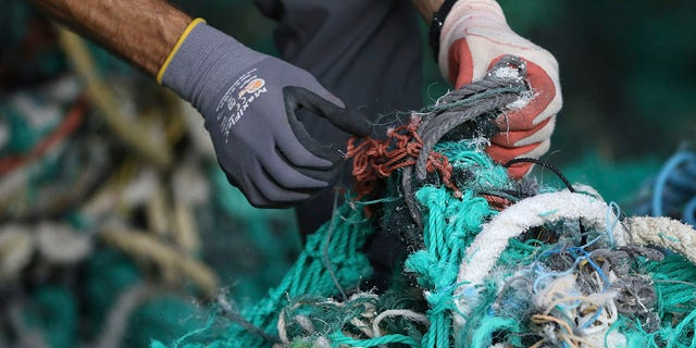 Drew McWhirter, a graduate student at Hawaii Pacific University's Center for Marine Debris Research, pulls apart a massive entanglement of ghost nets on Wednesday, May 12, 2021, in Kaneohe, Hawaii. Researchers are conducting a study that is attempting to trace derelict fishing gear that washes ashore in Hawaii back to the manufacturers and fisheries that it came from. (AP Photo/Caleb Jones)
