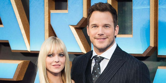 Anna Faris said she felt  'Hand forced' when divorcing Chris Pratt (Photo by Samir Hussein / WireImage)