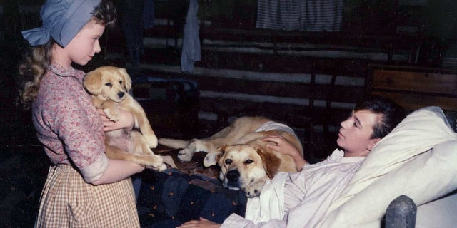 Beverly Washburn said she was eager to work with animals before taking on 'Old Yeller.'