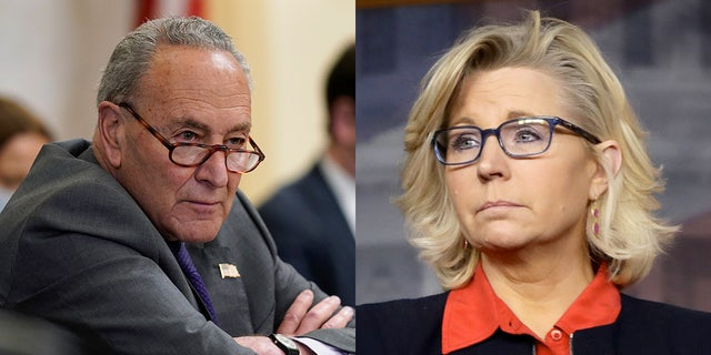 Senate Majority Leader Chuck Schumer, D-N.Y., named Rep. Liz Cheney, R-Wyo., during debate on Democrats' sweeping election bill in the Senate Rules Committee Tuesday.