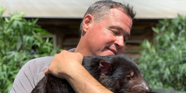 Biologist and wildlife conservationist Jeff Corwin holds a Tasmanian Devil at the Trowunna Wildlife Sanctuary in Tasmania.