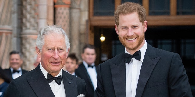 Prince Harry says he was put through 'pain and suffering' by his father Prince Charles.jpg
