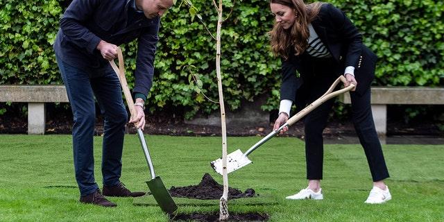 ウィリアム王子, Duke of Cambridge and Catherine, Duchess of Cambridge take part in planting a tree during a visit to the University of St Andrews on May 26, 2021, in St Andrews, Scotland.  (Photo by Andy Buchanan - WPA Pool/Getty Images)