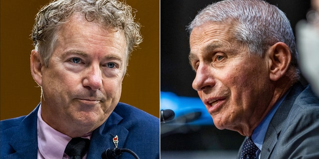 Fauci intimidates scientists with differing opinions because he controls funding, Paul claims