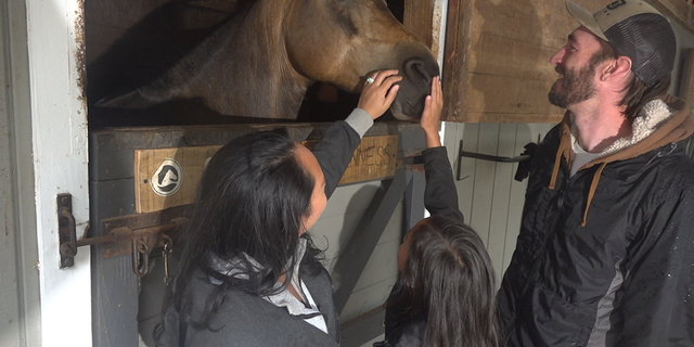 Fusion Stables in Woodstock, Ga has dozens of horses. (Fox News)