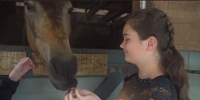 Daliah Roberts pets a horse at Fusion Stables summer camps. (Fox News)