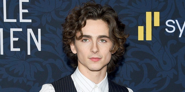 Actor Timothee Chalamet starred in 'Call Me By Your Name' alongside Armie Hammer.