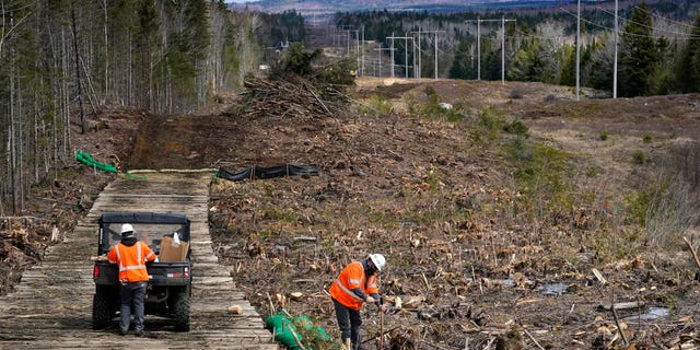 FILE - In this April 26, 2021 file photo, workers for Northern Clearing pound stakes to mark land on an existing Central Maine Power power line corridor that has been recently widened to make way for new utility poles, near Bingham, Maine.