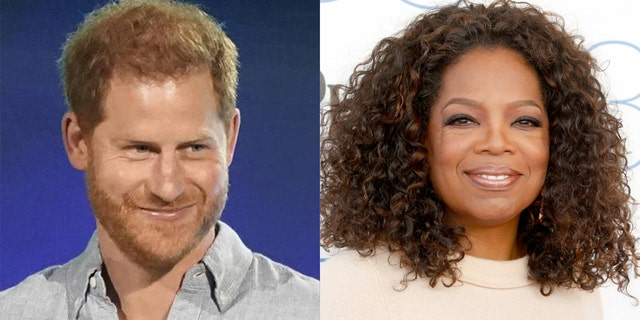 Prince Harry and his closest confidant Oprah Winfrey are throwing their support behind a tax-payer-funded alternative policing effort in Oregon.