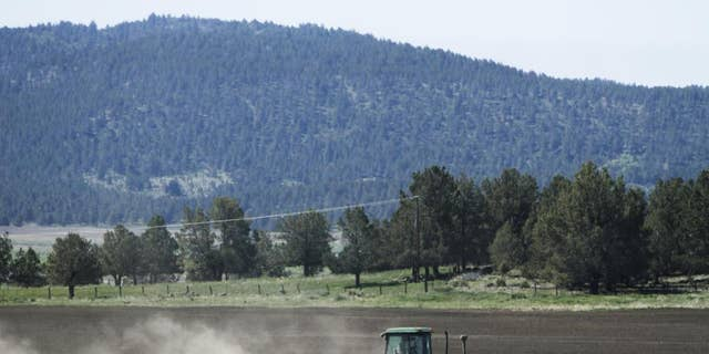 In this April 8, 2015, file photo, a tractor works a parcel of farm land in the Klamath Basin near Klamath Falls, Ore. A severe drought is creating a water crisis not seen in more than a century for farmers, tribes and federally protected fish along the Oregon-California border. The U.S. Bureau of Reclamation says it won't release water into the main canal that feeds the massive Klamath Project irrigation system for the first time in 114 years, leaving many farmers and ranchers with no water at all. (Dave Martinez/The Herald And News via AP, File)