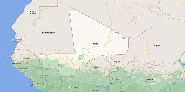Olivier Dubois was kidnapped April 8 while working in Mali's northern city of Gao