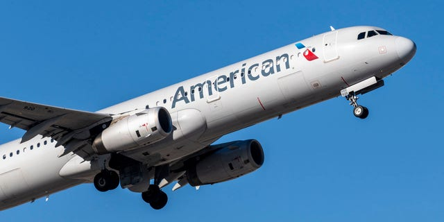 According to reports, a passenger on an American Airlines flight struck one of the flight attendants multiples times midway through the flight on Sunday.
